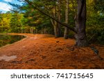 a winding orange tinged pathway ... | Shutterstock . vector #741715645