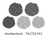 truffle set. isolated truffle... | Shutterstock .eps vector #741721741