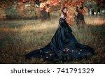 portrait of magnificent fashion ... | Shutterstock . vector #741791329