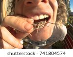 man feeding on bug  fisheye... | Shutterstock . vector #741804574