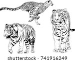 set of vector drawings on the... | Shutterstock .eps vector #741916249