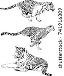 set of vector drawings on the... | Shutterstock .eps vector #741916309