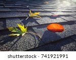 colorful fall leaves on a roof | Shutterstock . vector #741921991