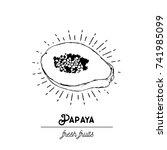 vector illustration   papaya... | Shutterstock .eps vector #741985099