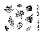 set of autumn  fall leaves  ...   Shutterstock .eps vector #741999661