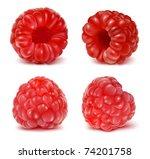 vector illustration of ripe...   Shutterstock .eps vector #74201758