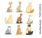 cat different breeds set  cute... | Shutterstock .eps vector #742112011