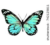 beautiful blue butterfly... | Shutterstock . vector #742125811
