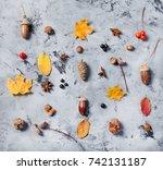 autumn composition pattern made ... | Shutterstock . vector #742131187