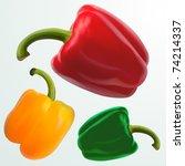 vector ball peppers | Shutterstock .eps vector #74214337
