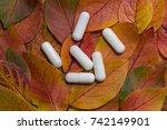 pills on autumn leaves  the... | Shutterstock . vector #742149901