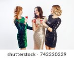three celebrating women in... | Shutterstock . vector #742230229