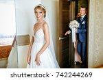 meeting the bride and groom.... | Shutterstock . vector #742244269