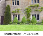 Topiary Cone Shaped Shrubs ...