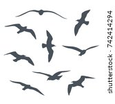Set Of Black  Flying Seagull...