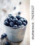 fresh blueberries in small... | Shutterstock . vector #74253127