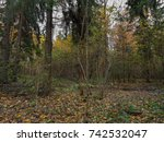cold forest in autumn. russia | Shutterstock . vector #742532047
