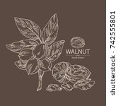 background with walnut  nuts... | Shutterstock .eps vector #742555801
