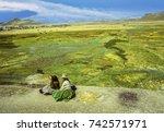 Altiplano  Peru   Sep 22  1998...
