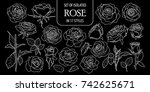 set of isolated rose in 17... | Shutterstock .eps vector #742625671