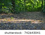 close up of an autumnal path in ... | Shutterstock . vector #742643041