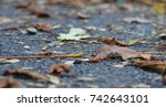 close up of an autumnal path in ... | Shutterstock . vector #742643101
