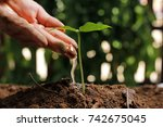 hands of farmer growing and... | Shutterstock . vector #742675045