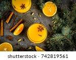 fall  winter cocktails  hot... | Shutterstock . vector #742819561