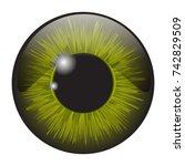 green iris eye realistic ...   Shutterstock .eps vector #742829509