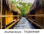 A Wooden Path In A Jungle Lodg...