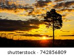 sunset field tree silhouette... | Shutterstock . vector #742856809
