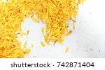 petals marigold on a white... | Shutterstock . vector #742871404