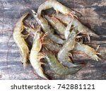 vietnamese whiteleg shrimp ... | Shutterstock . vector #742881121