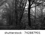 autumn landscapes of the autumn ...   Shutterstock . vector #742887901