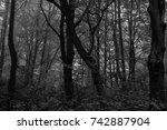 autumn landscapes of the autumn ...   Shutterstock . vector #742887904