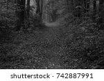 autumn landscapes of the autumn ...   Shutterstock . vector #742887991