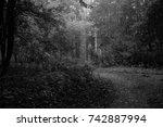 autumn landscapes of the autumn ...   Shutterstock . vector #742887994