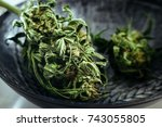 close up of dried medical... | Shutterstock . vector #743055805