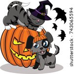 pumpkin for halloween  cat and... | Shutterstock .eps vector #743065594
