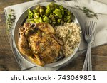 herby baked cornish game hens... | Shutterstock . vector #743069851