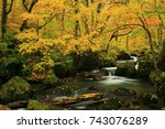 oirase gorge in autumn | Shutterstock . vector #743076289
