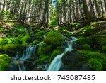 Waterfalls In Mount Rainier...