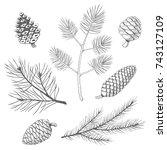 hand drawn set of fir and pine... | Shutterstock .eps vector #743127109