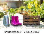 watering can and wellies and in ... | Shutterstock . vector #743153569