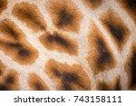 giraffe spots pattern  | Shutterstock . vector #743158111