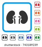 kidneys icon. flat grey...