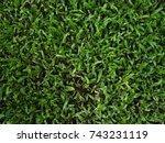 green grass texture | Shutterstock . vector #743231119