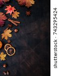 autumn background with candied... | Shutterstock . vector #743295424