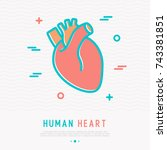 human heart thin line icon.... | Shutterstock .eps vector #743381851