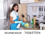 happy young woman cleaning... | Shutterstock . vector #743657554